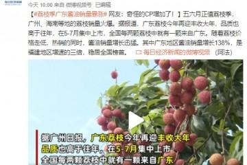 荔枝季广东酱油销量暴涨网友奇怪的CP增加了