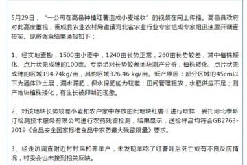 媒体人发布毒红薯事件被威胁48小时删帖金财经怒怼不撤稿继续关注直到真相大白